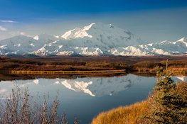 Photo of denali small homepage