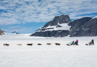 Photo of Juneau Extended Norris Glacier Dog Sledding Adventure