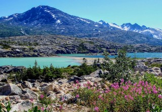 Photo of Skagway White Pass Summit and Beyond Tour