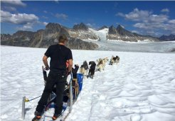 Photo of skagway dogsled and glacier flightseeing helicopter tour