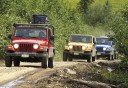 Photo of Jeeps on Dirt Trail