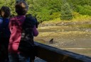 Photo of Ketchikan Black Bear & Wildlife Exploration Guests