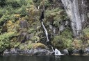 Photo of Ketchikan Misty Fjords Cruise and Flight Tour Waterfall