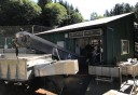 Photo of Ketchikan Neets Bay Bear Adventure Floatplane Tour Hatchery