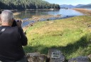 Photo of Ketchikan Neets Bay Bear Adventure Floatplane Tour guest taking a picture of bears
