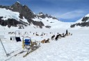 Photo of dogsledding on glacier