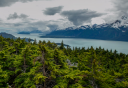 Photo of haines mount riley hike scenic view