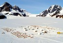 Photo of large dog sled camp on the herbert glacier in juneau
