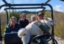 Photo of mushing atv