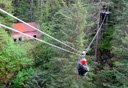 Photo of rainforest canopy zipline
