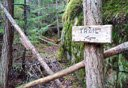 Photo of skagway hiking trail