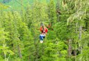 Photo of tongass national forest zipline