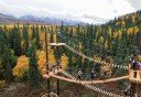 Photo of zipline platforms in denali
