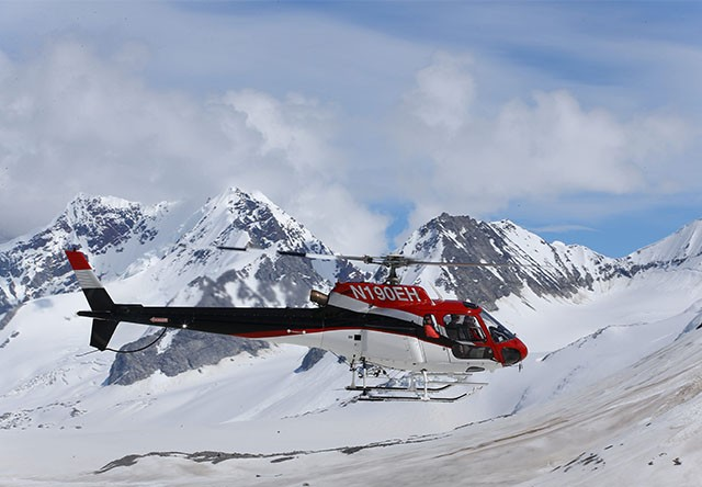 Denali National Park Flightseeing Excursion Via Helicopter  Alaska Shore Exc