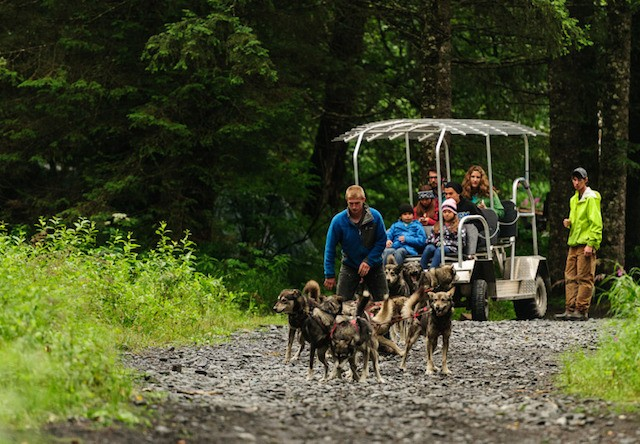 Photo of Seward Kennel Tour and Dog Sled Ride Mushing