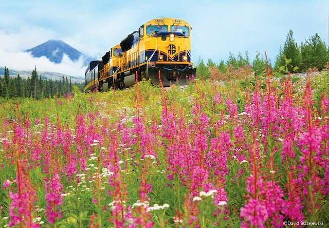 Photo of Train Flowers Alaska Railroad