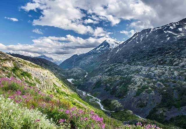 Yukon Suspension Bridge & Skagway White Pass Summit Tour