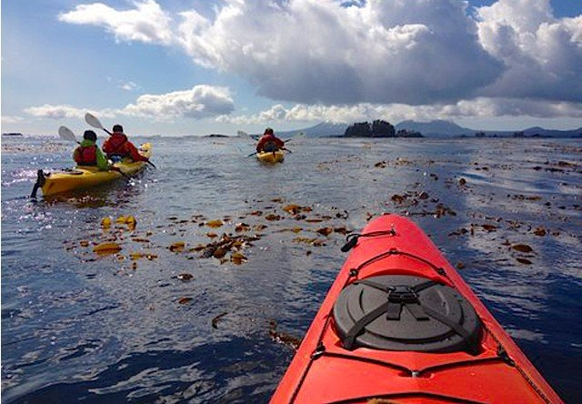 sitka full day kayaking