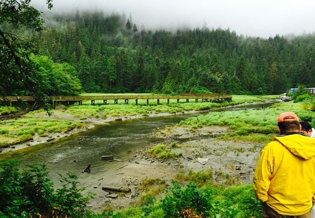 Saxman Totem Village And Wildlife Extension Alaska Shore