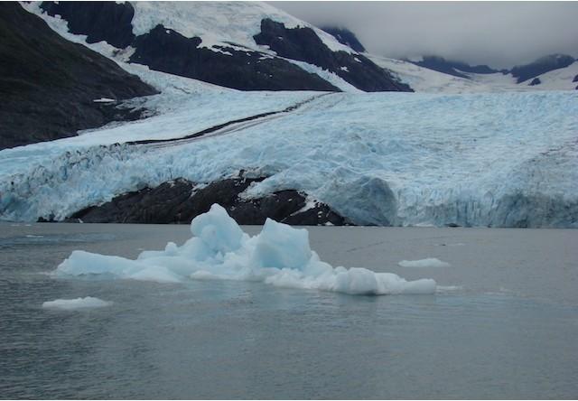 Anchorage Glacier Turn Tour Alaska Shore Excursions