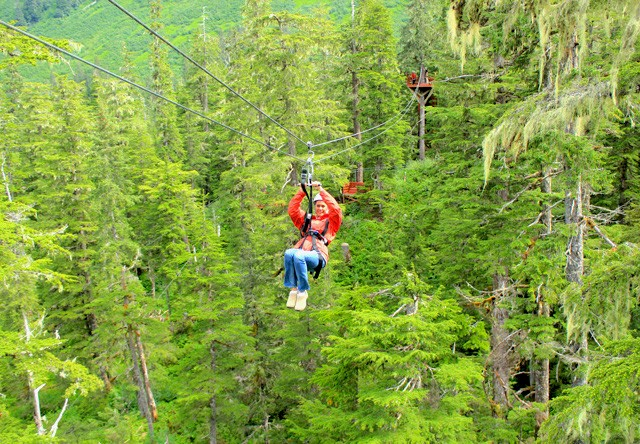 Photo of tongass national forest zipline : canopy zip line - afamca.org