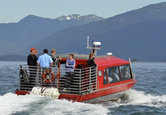 southeast alaska whale watching