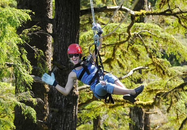 Ketchikan Rainforest Canopy Zipline Alaska Shore Excursions